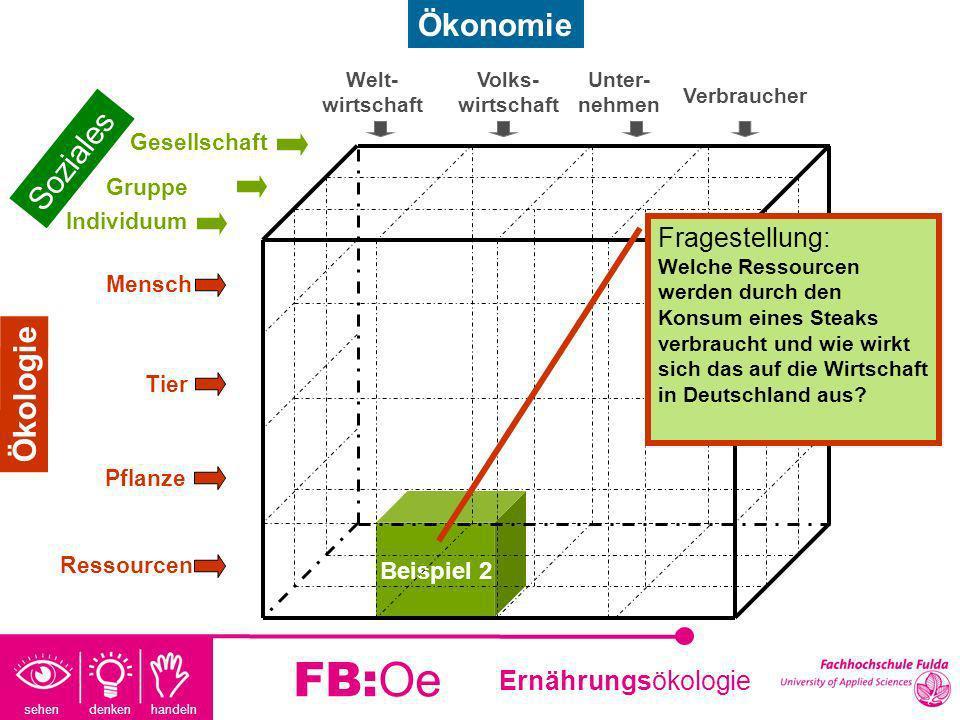 FB:Oe Ökonomie Soziales Ökologie Fragestellung: Beispiel 2
