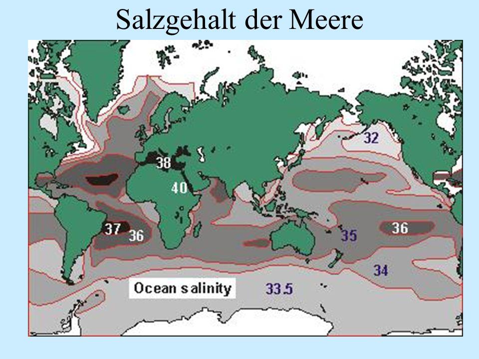 Salzgehalt der Meere
