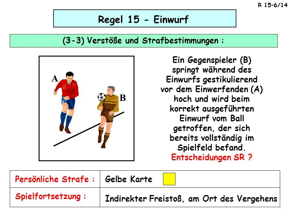 (3-3) Verstöße und Strafbestimmungen :