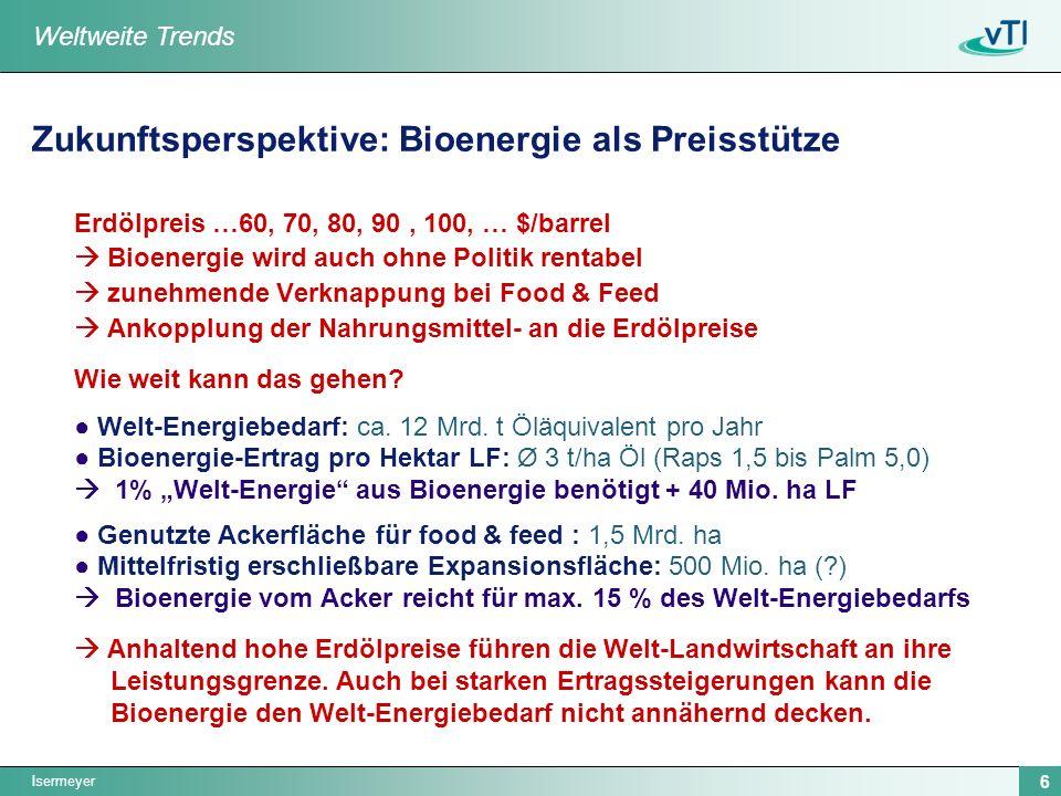 Zukunftsperspektive: Bioenergie als Preisstütze
