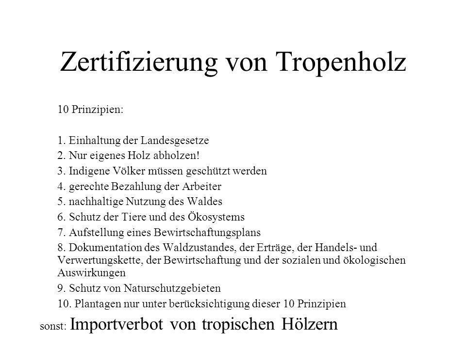 Zertifizierung von Tropenholz