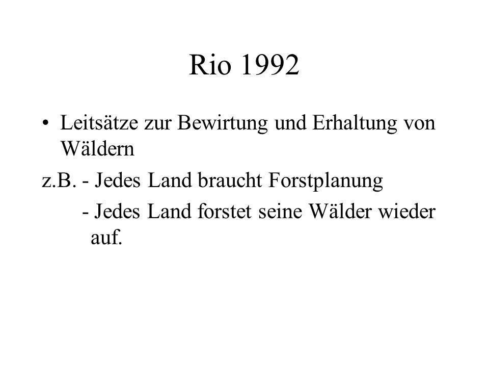 Rio 1992 Leitsätze zur Bewirtung und Erhaltung von Wäldern