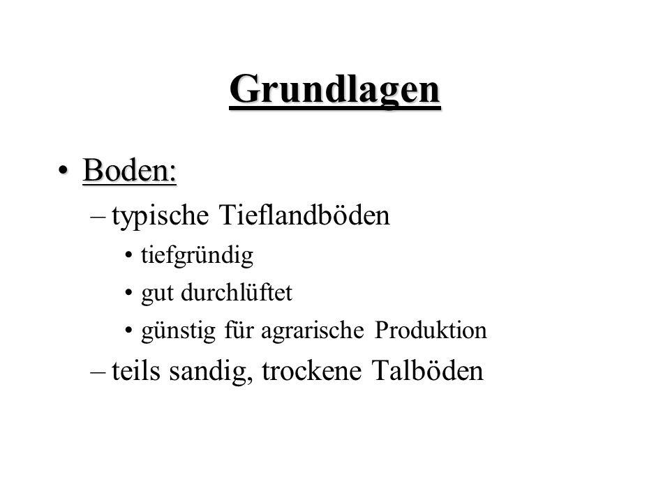 Grundlagen Boden: typische Tieflandböden