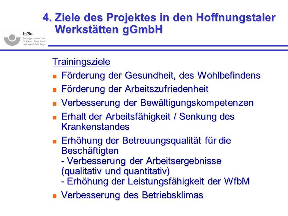 4. Ziele des Projektes in den Hoffnungstaler Werkstätten gGmbH