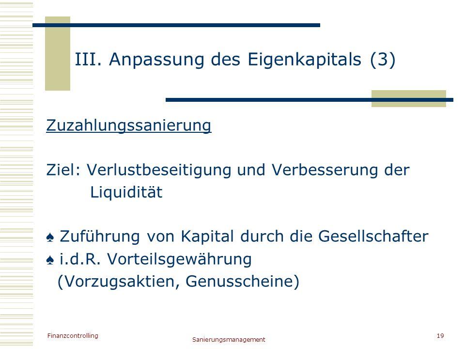 III. Anpassung des Eigenkapitals (3)