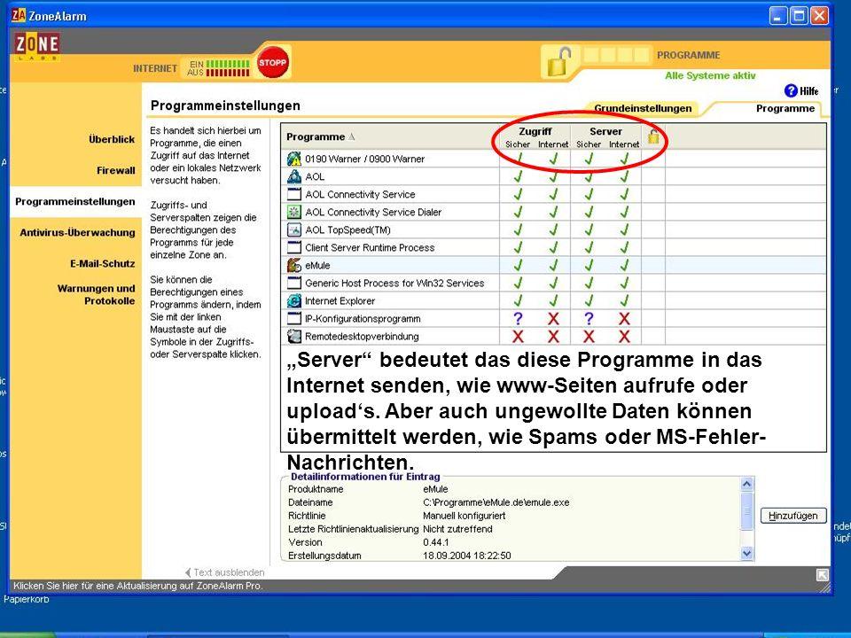 """""""Server bedeutet das diese Programme in das Internet senden, wie www-Seiten aufrufe oder upload's."""