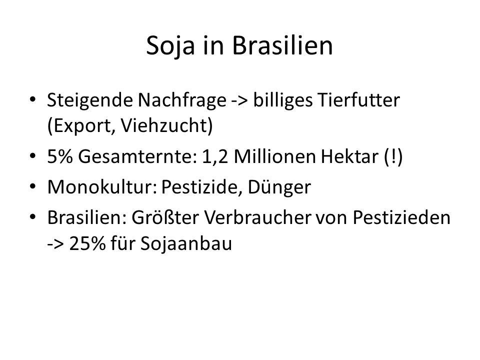 Soja in Brasilien Steigende Nachfrage -> billiges Tierfutter (Export, Viehzucht) 5% Gesamternte: 1,2 Millionen Hektar (!)