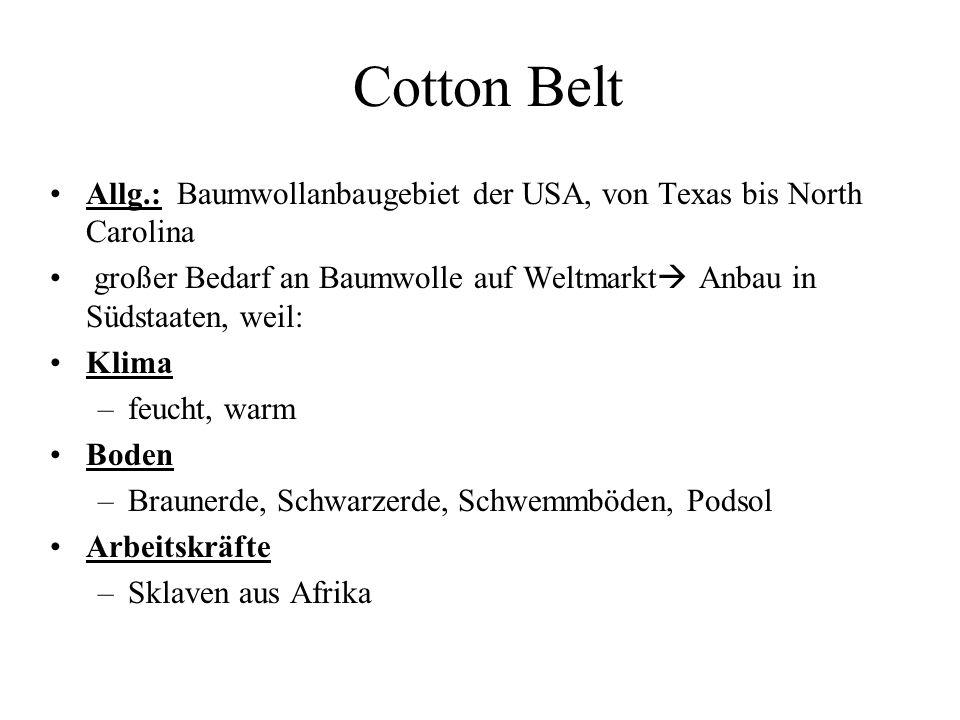 Cotton Belt Allg.: Baumwollanbaugebiet der USA, von Texas bis North Carolina. großer Bedarf an Baumwolle auf Weltmarkt Anbau in Südstaaten, weil: