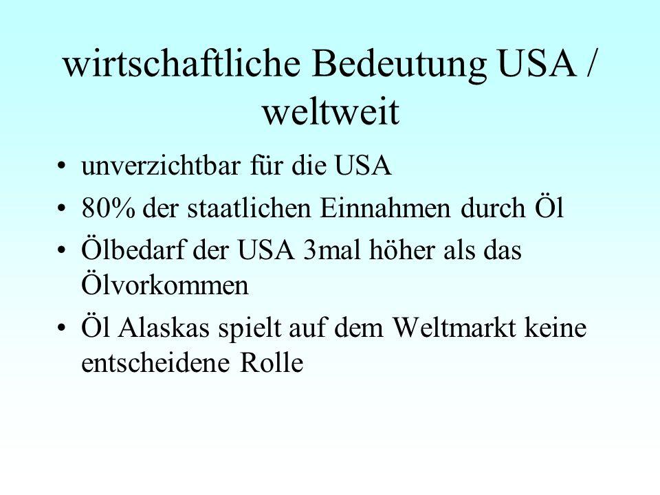 wirtschaftliche Bedeutung USA / weltweit