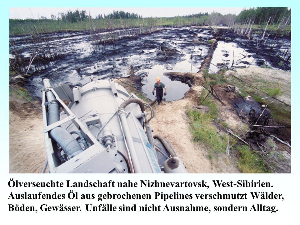 Ölverseuchte Landschaft nahe Nizhnevartovsk, West-Sibirien