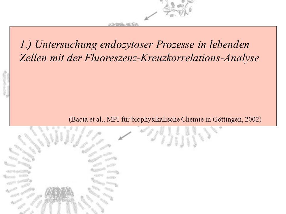 1.) Untersuchung endozytoser Prozesse in lebenden Zellen mit der Fluoreszenz-Kreuzkorrelations-Analyse