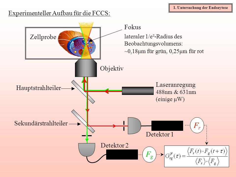 Experimenteller Aufbau für die FCCS: