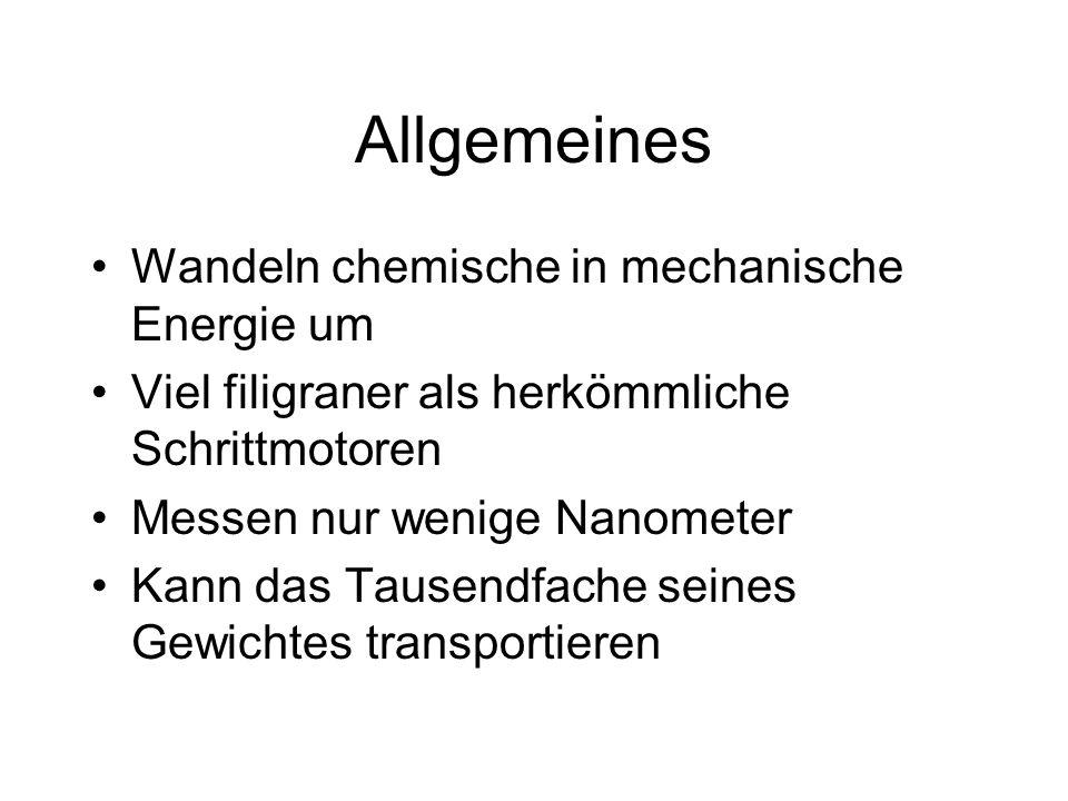 Allgemeines Wandeln chemische in mechanische Energie um