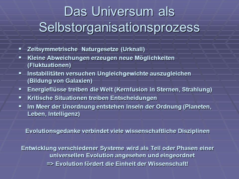 Das Universum als Selbstorganisationsprozess