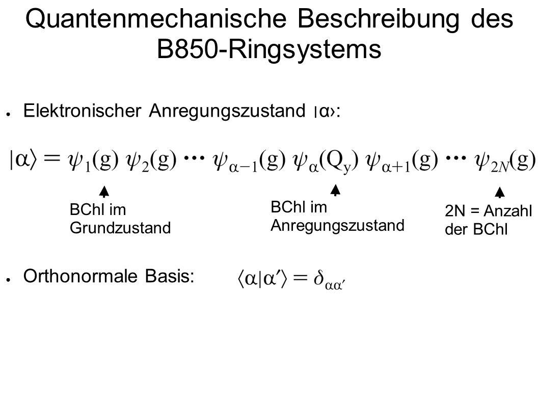 Quantenmechanische Beschreibung des B850-Ringsystems