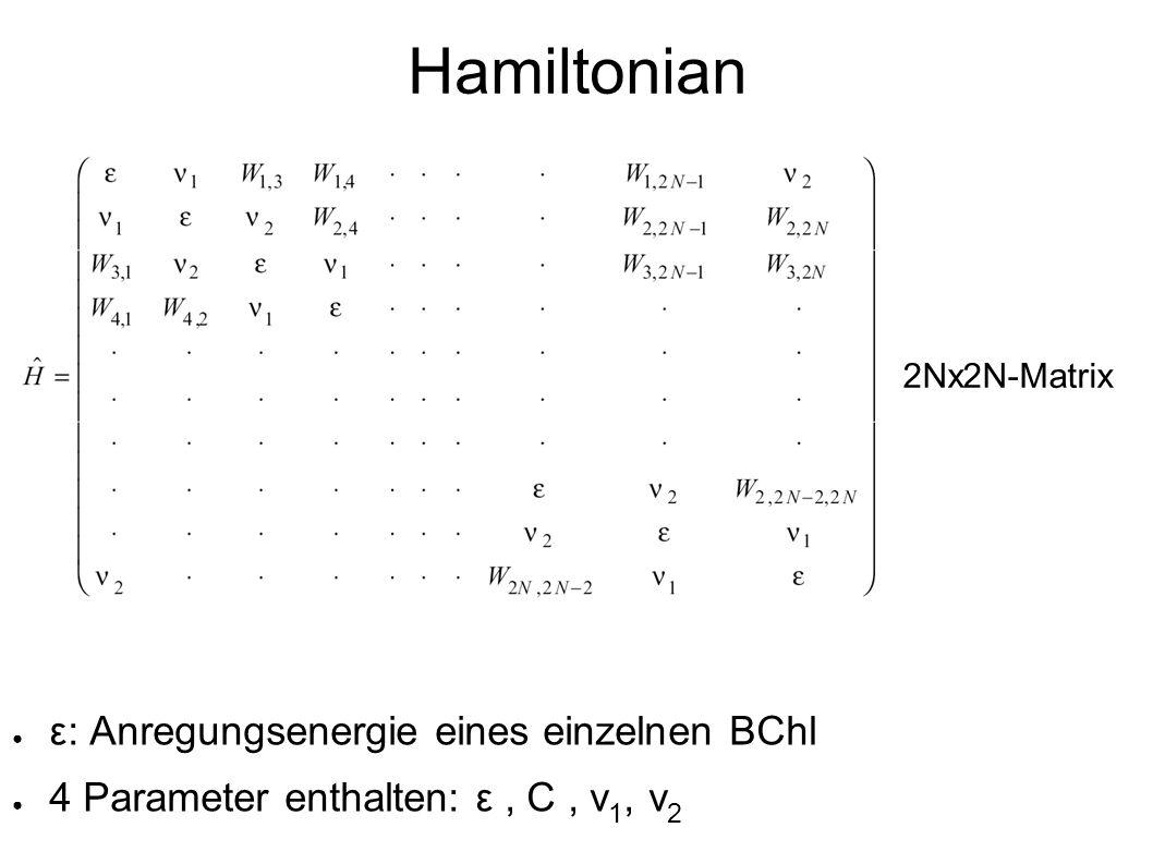 Hamiltonian ε: Anregungsenergie eines einzelnen BChl