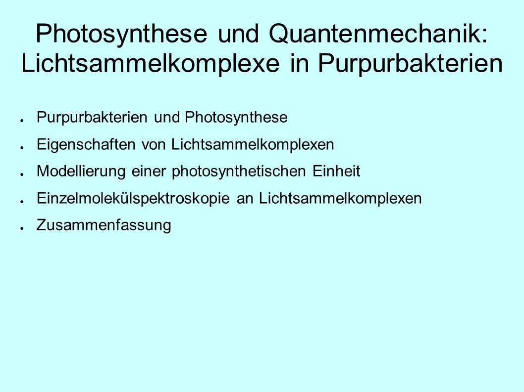 Photosynthese und Quantenmechanik: Lichtsammelkomplexe in Purpurbakterien