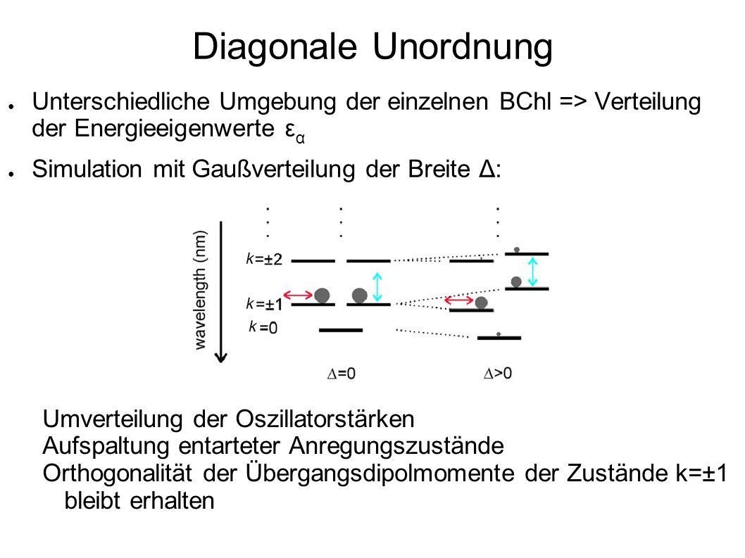 Diagonale Unordnung Unterschiedliche Umgebung der einzelnen BChl => Verteilung der Energieeigenwerte εα.