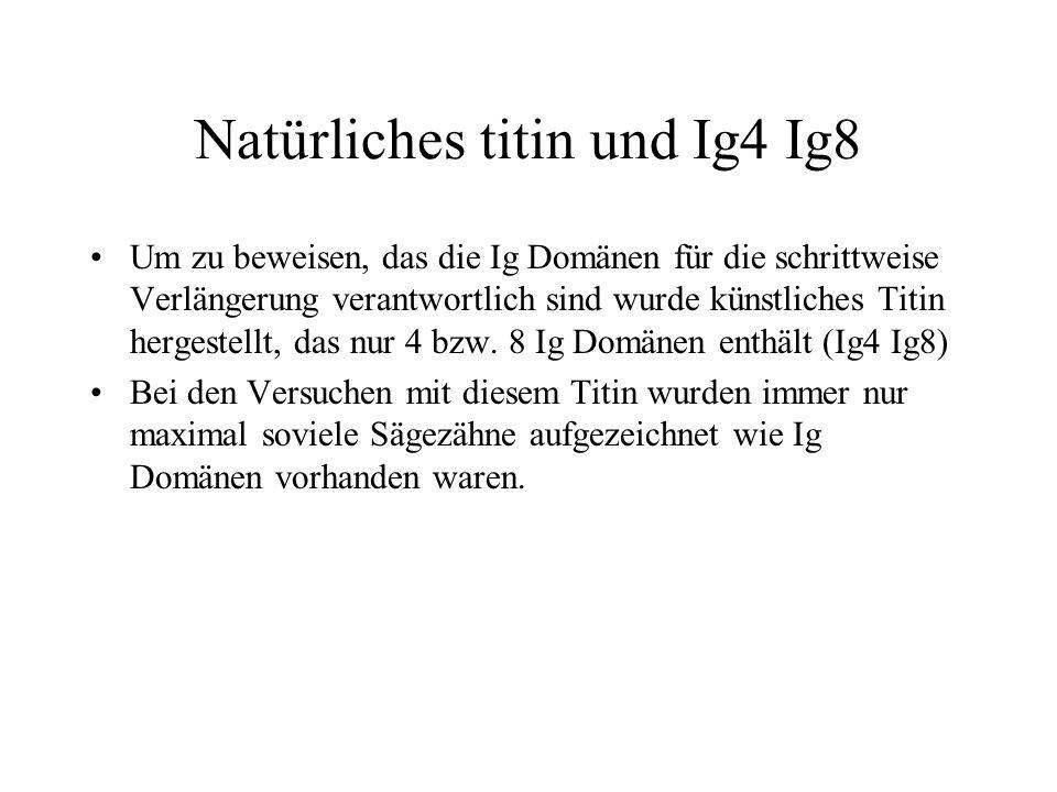 Natürliches titin und Ig4 Ig8