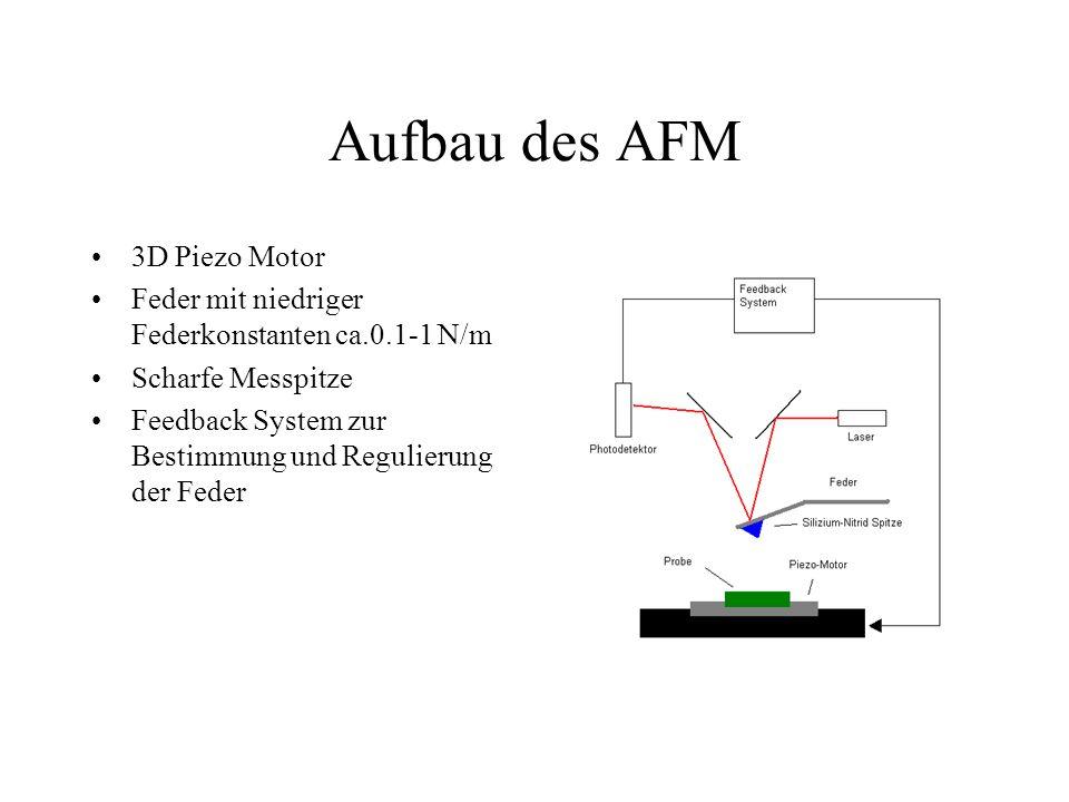 Aufbau des AFM 3D Piezo Motor