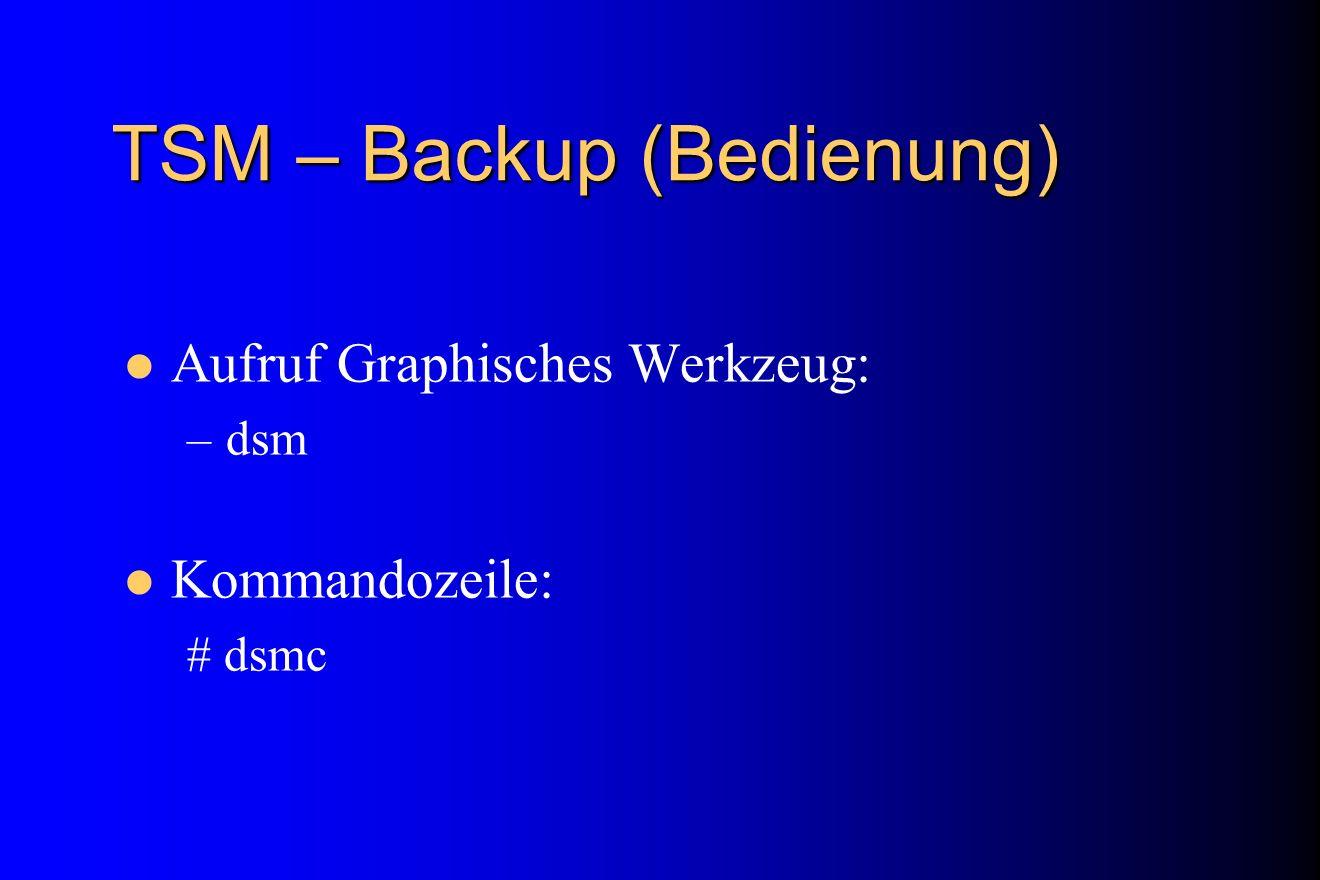 TSM – Backup (Bedienung)