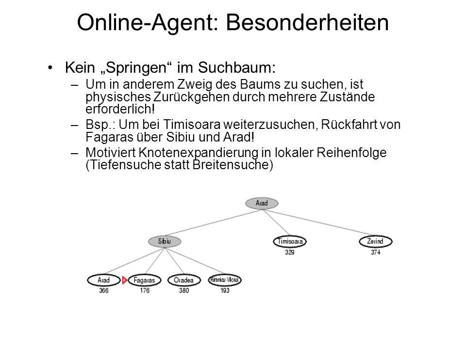 Online-Agent: Besonderheiten