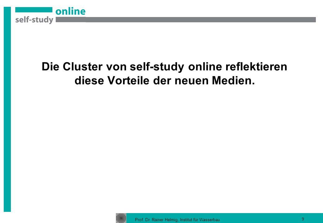 Die Cluster von self-study online reflektieren diese Vorteile der neuen Medien.
