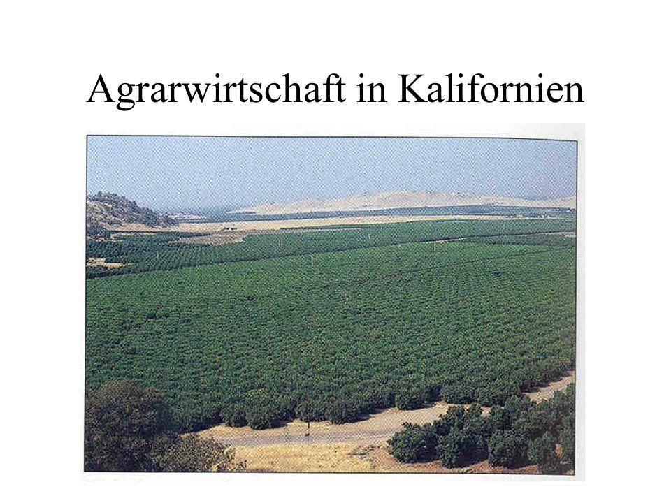 Agrarwirtschaft in Kalifornien