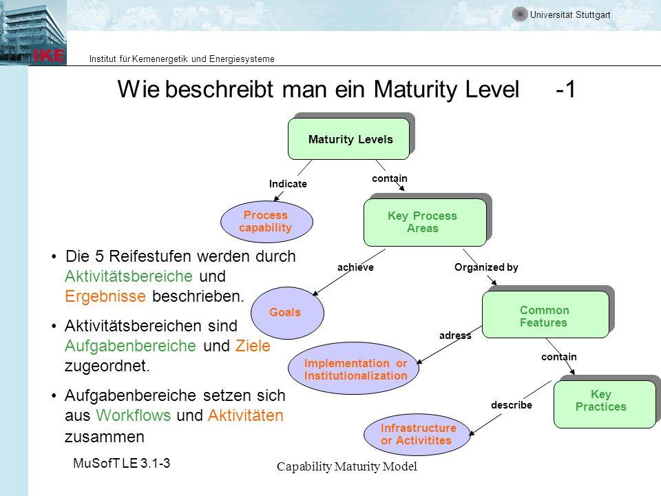 Wie beschreibt man ein Maturity Level -1