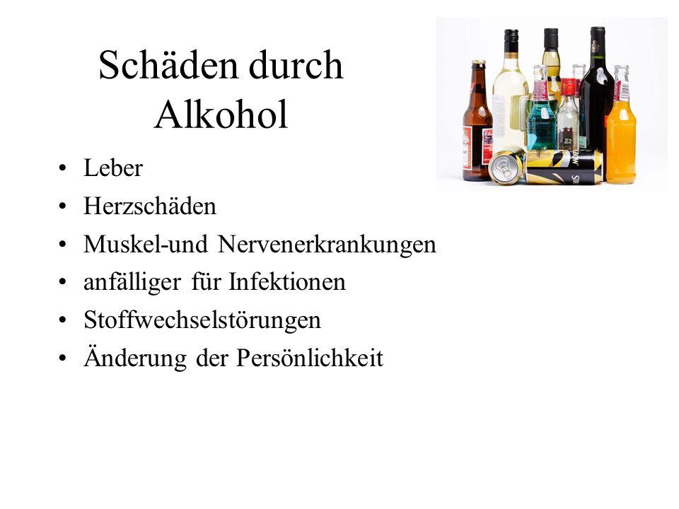 Schäden durch Alkohol Leber Herzschäden Muskel-und Nervenerkrankungen