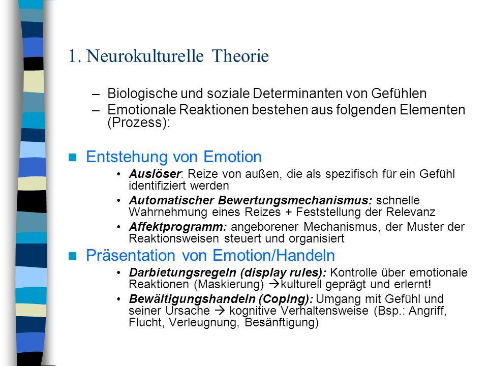1. Neurokulturelle Theorie