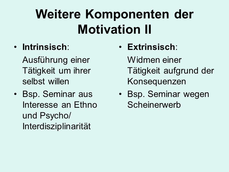 Weitere Komponenten der Motivation II