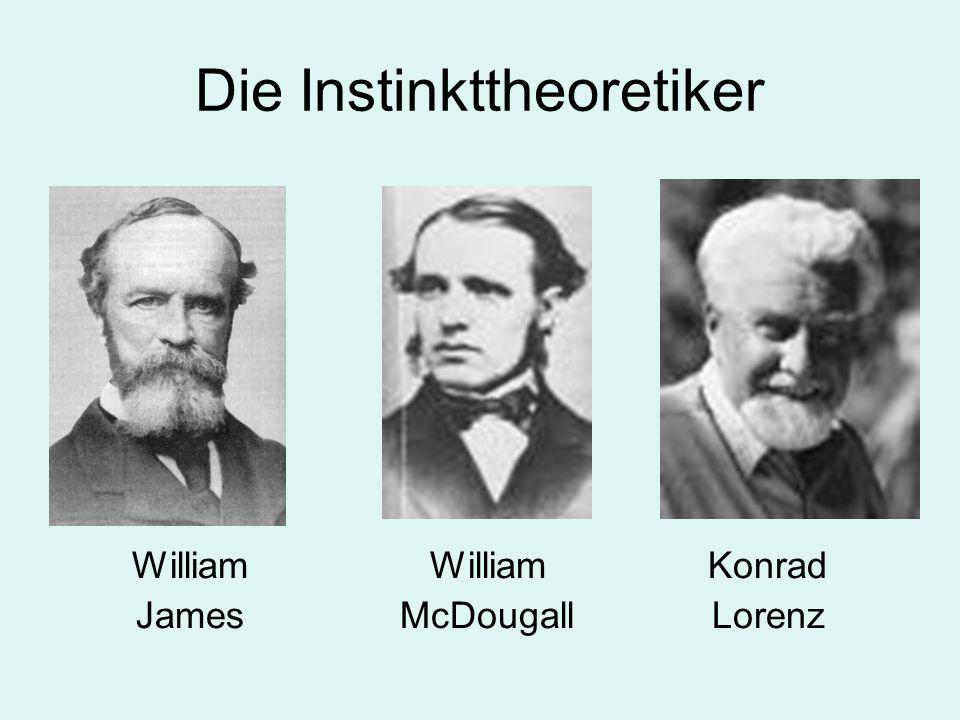 Die Instinkttheoretiker