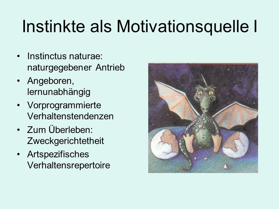 Instinkte als Motivationsquelle I