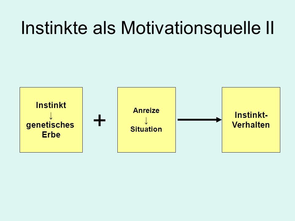Instinkte als Motivationsquelle II