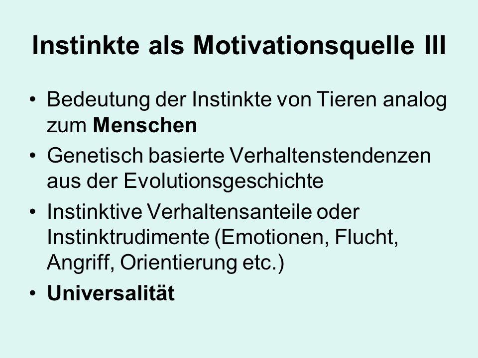 Instinkte als Motivationsquelle III