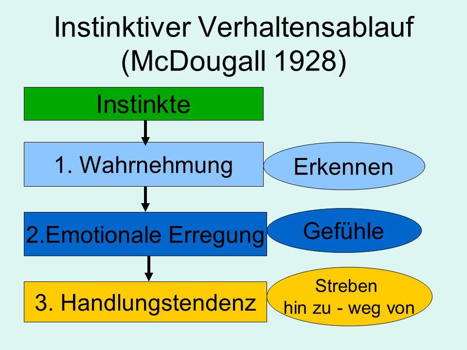 Instinktiver Verhaltensablauf (McDougall 1928)