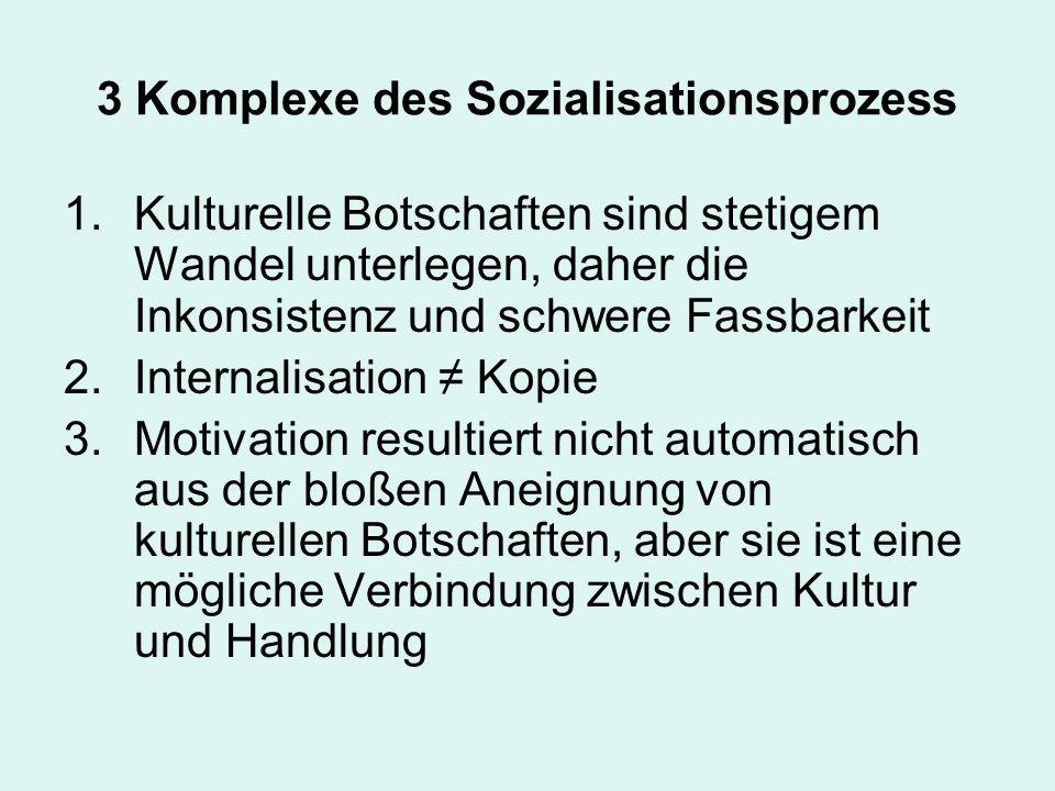 3 Komplexe des Sozialisationsprozess