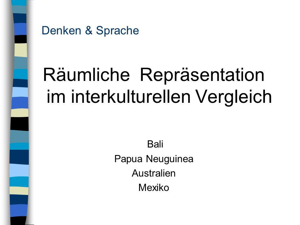 Räumliche Repräsentation im interkulturellen Vergleich