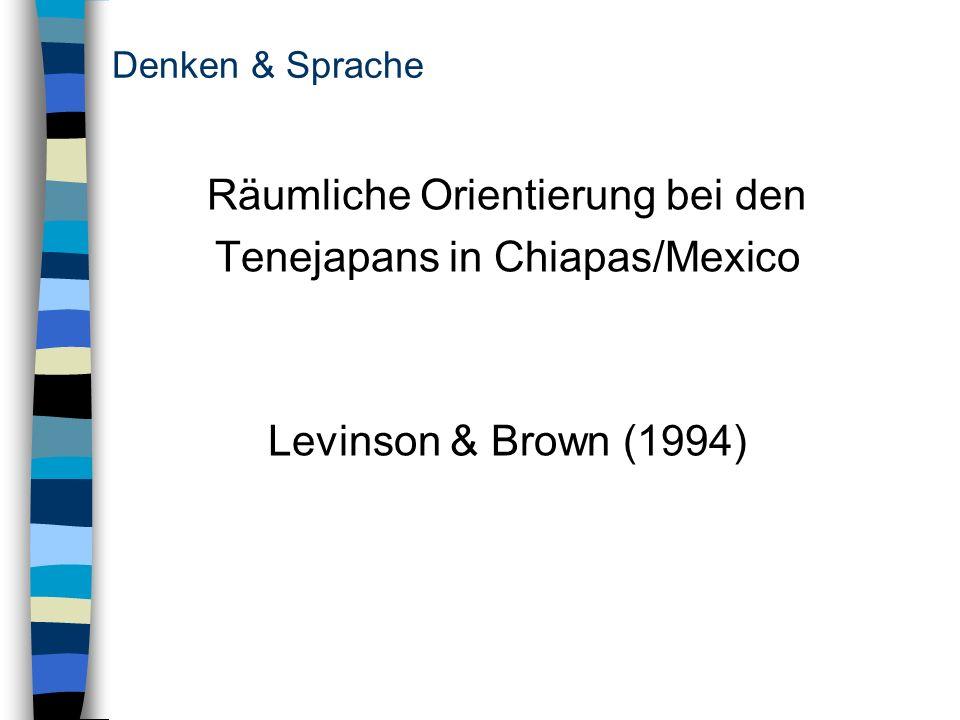 Räumliche Orientierung bei den Tenejapans in Chiapas/Mexico