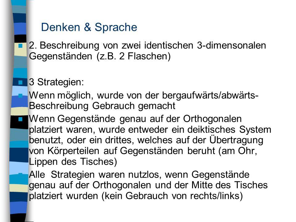 Denken & Sprache2. Beschreibung von zwei identischen 3-dimensonalen Gegenständen (z.B. 2 Flaschen) 3 Strategien: