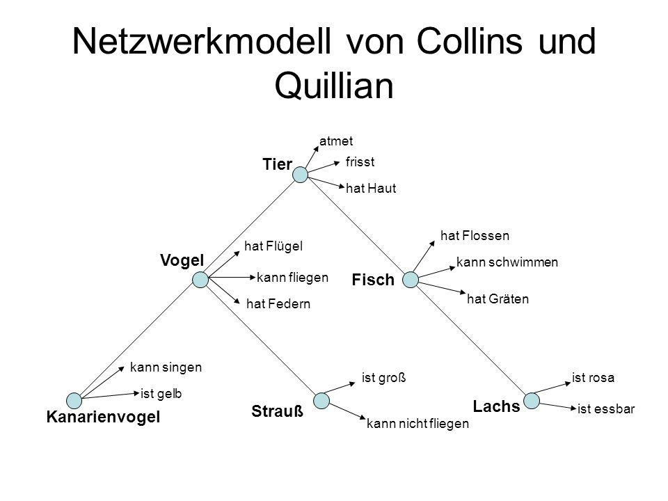 Netzwerkmodell von Collins und Quillian