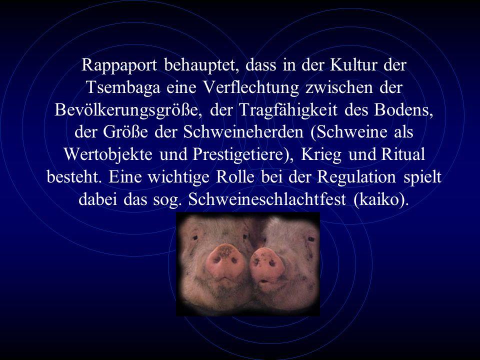 Rappaport behauptet, dass in der Kultur der Tsembaga eine Verflechtung zwischen der Bevölkerungsgröße, der Tragfähigkeit des Bodens, der Größe der Schweineherden (Schweine als Wertobjekte und Prestigetiere), Krieg und Ritual besteht.