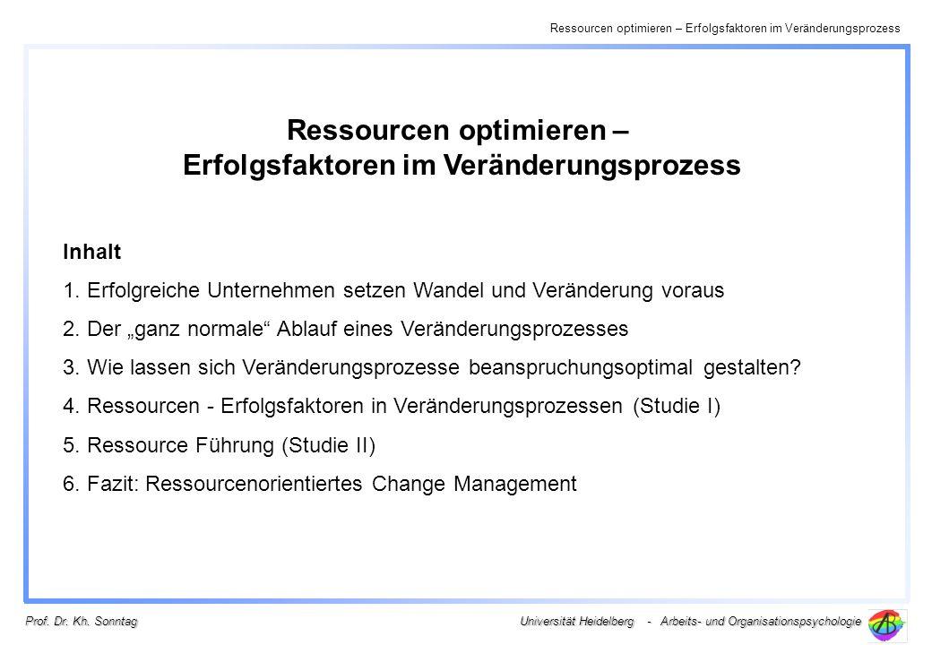 Ressourcen optimieren – Erfolgsfaktoren im Veränderungsprozess
