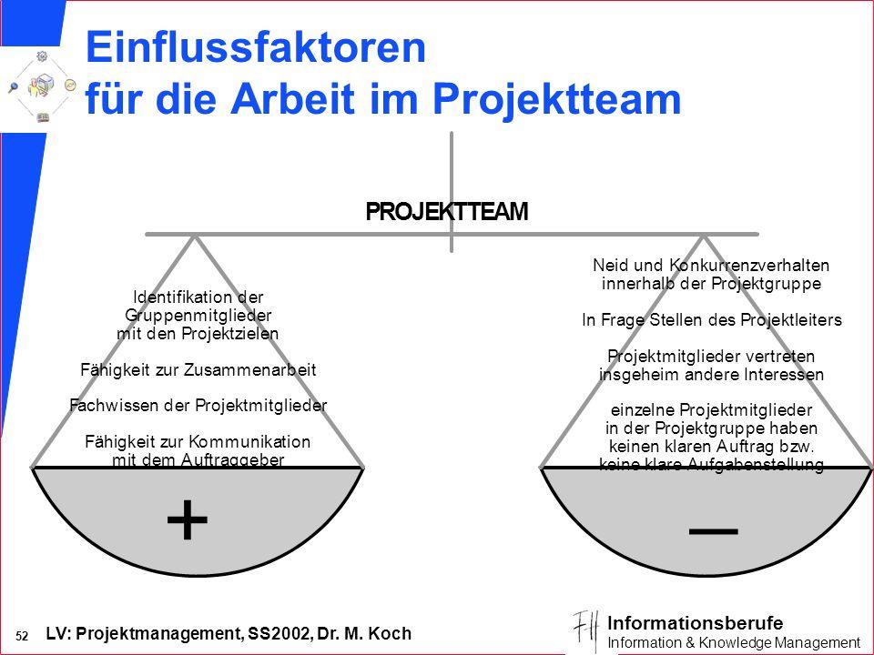 Einflussfaktoren für die Arbeit im Projektteam