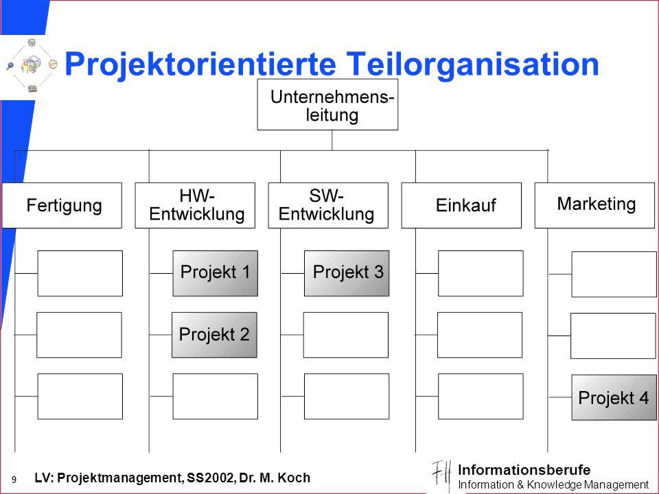 Projektorientierte Teilorganisation