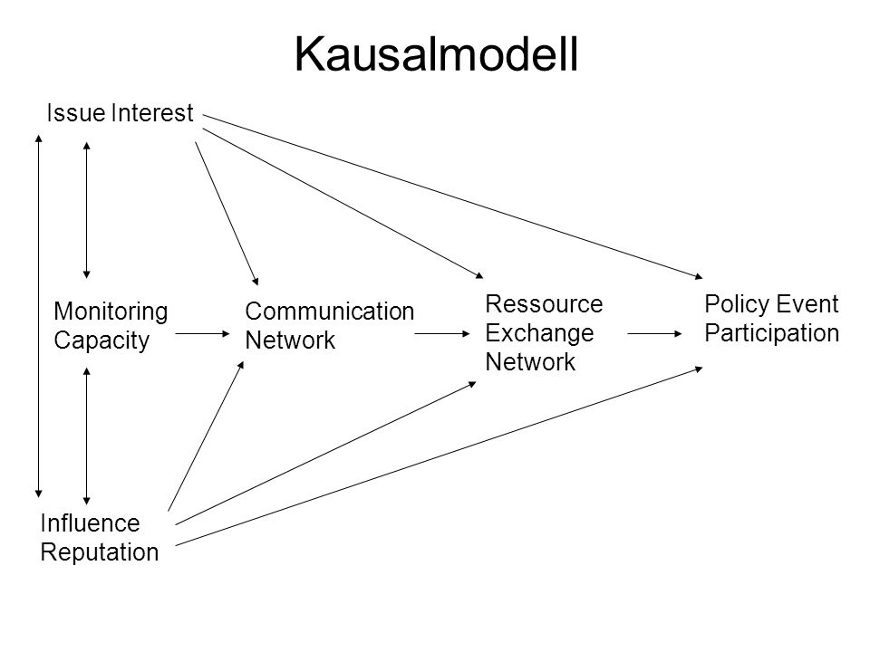 Kausalmodell Issue Interest Monitoring Capacity Influence Reputation