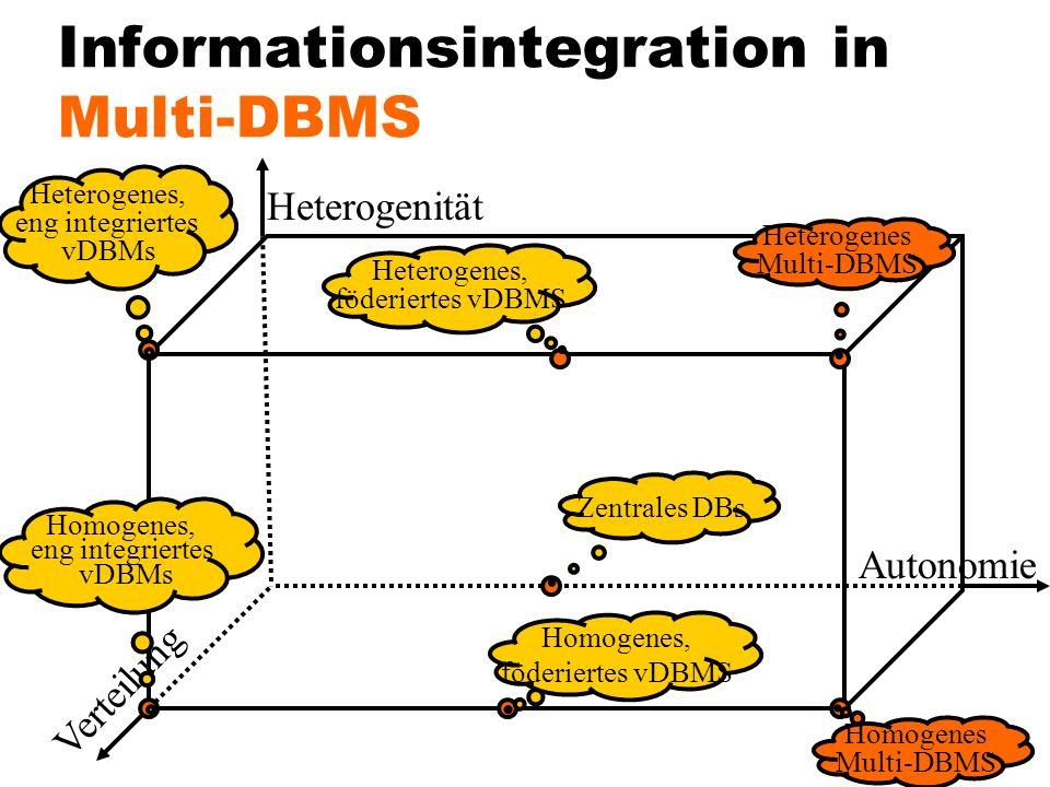 Informationsintegration in Multi-DBMS