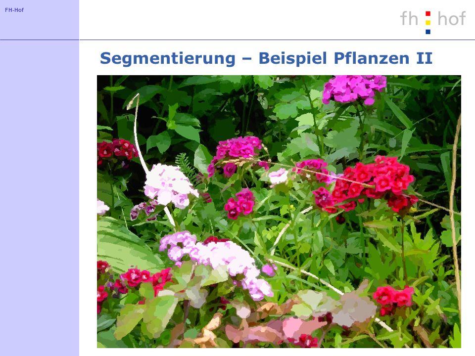 Segmentierung – Beispiel Pflanzen II