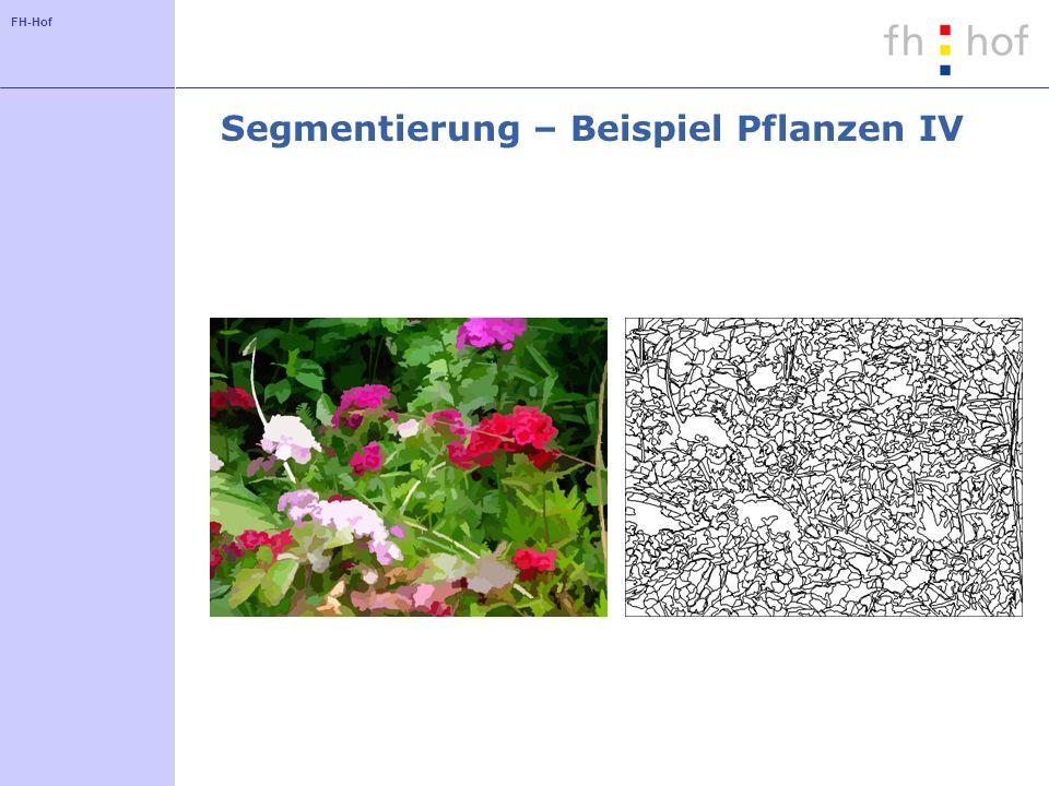 Segmentierung – Beispiel Pflanzen IV